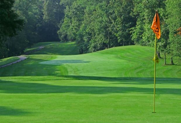 golf_slider_hickory_wood_3